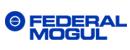 Logo Federal Mogul, Goetze, Payen, Ferodo, Champion...